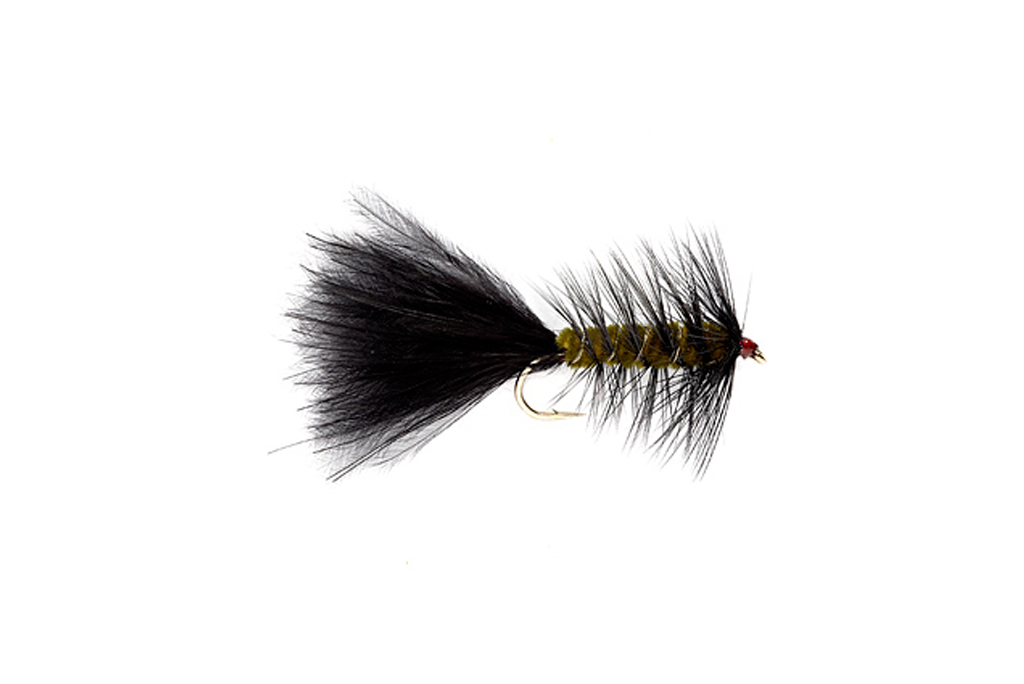 Woolly Bugger Olive & Black
