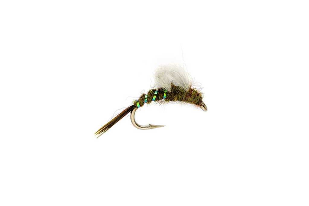 CdC Emerger BWO