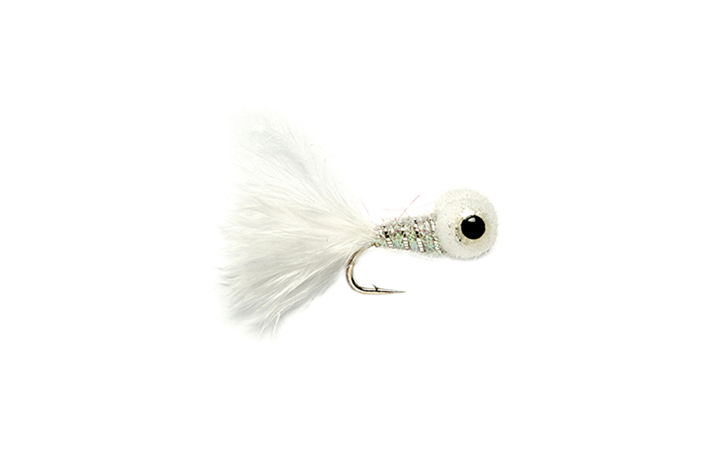 Big Eyed Panfish Bug White