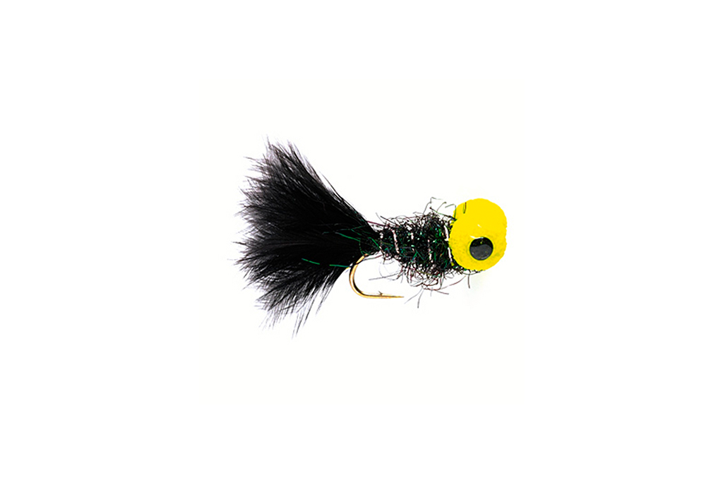 Big Eyed Panfish Bug Black