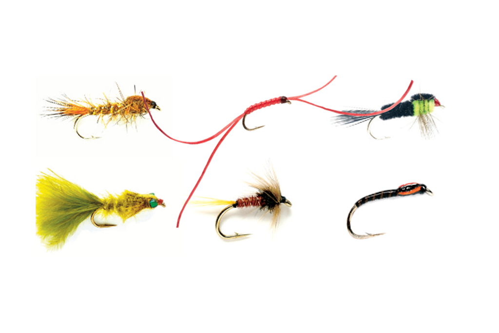 Nymphs Selection