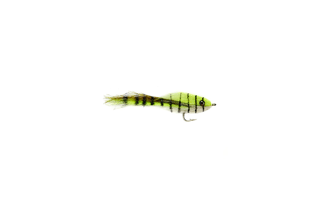 King's Hoo Fly Pinfish