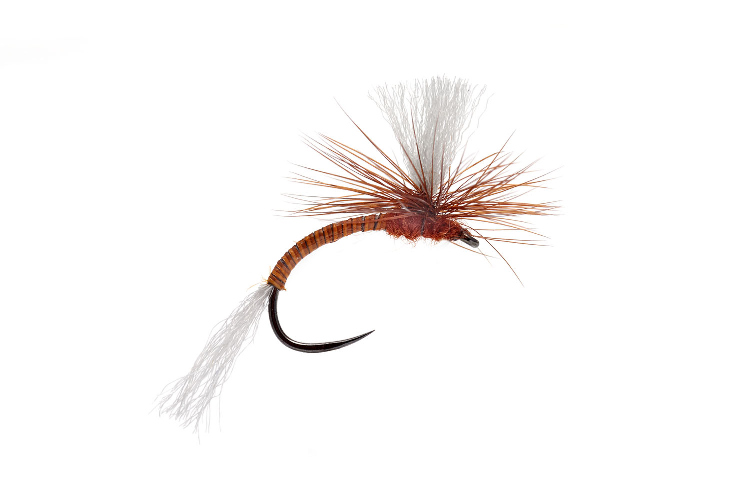 Lexi's Para Emerger Rusty Barbless