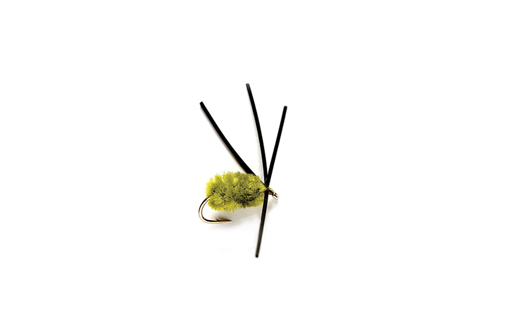 Bully Bluegill Spider Olive
