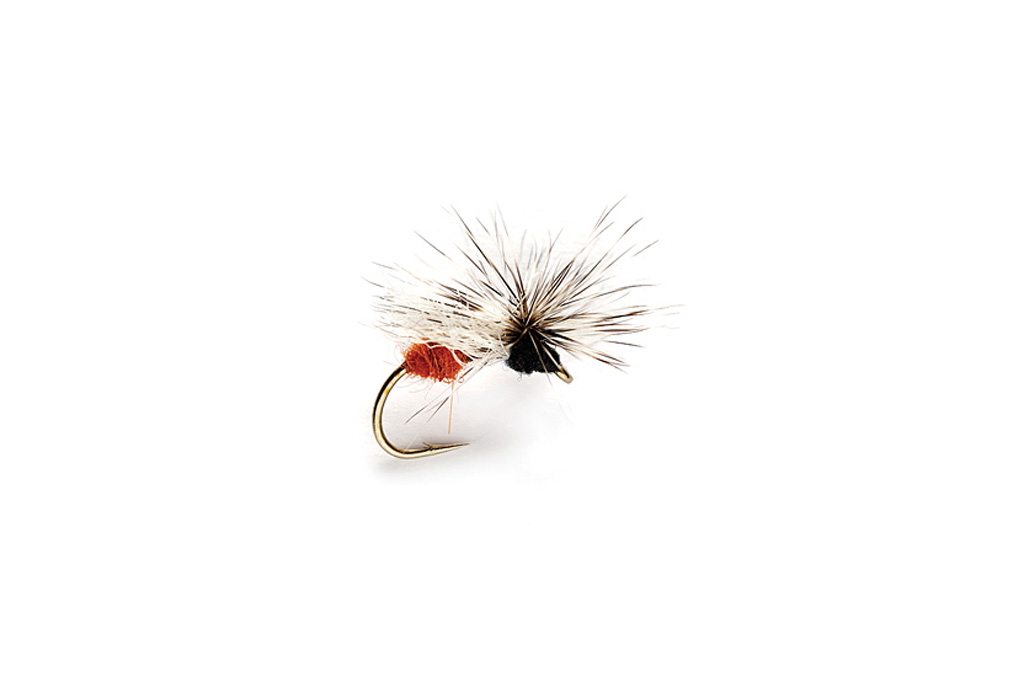 Splitsville Fly Ant Black & Red