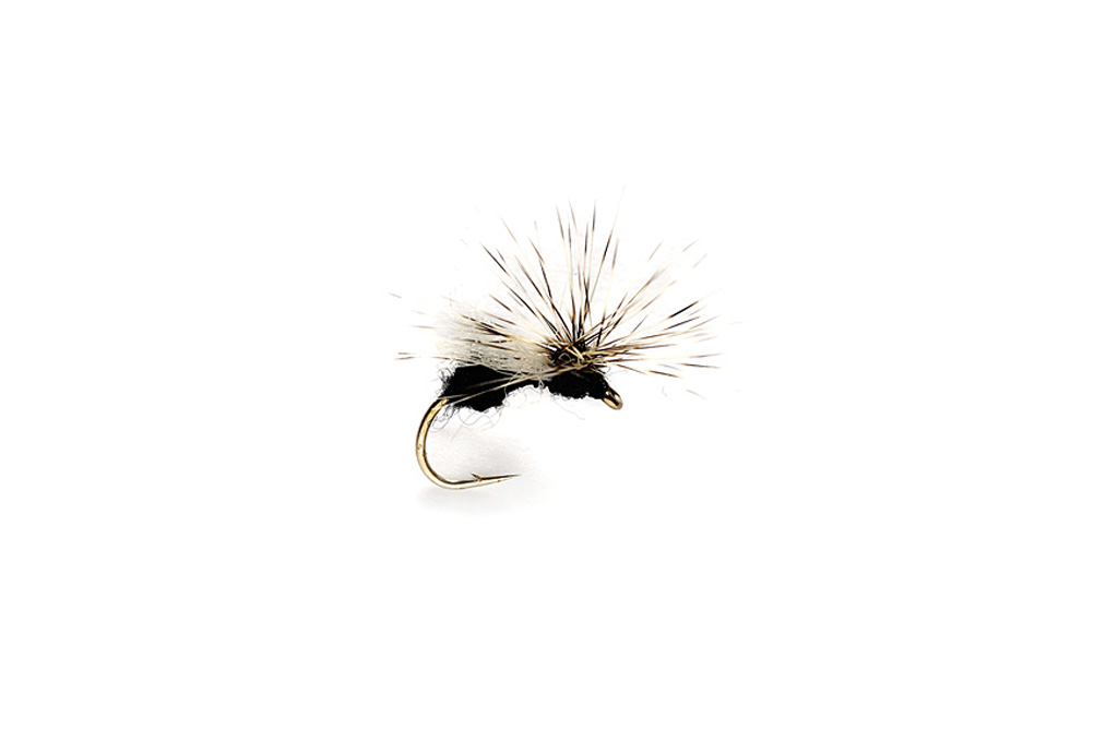 Splitsville Fly Ant Black