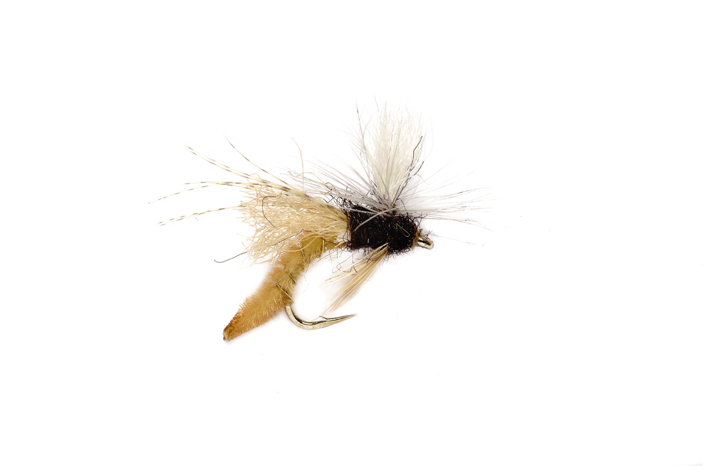 Spotlight Caddis Emerger Tan