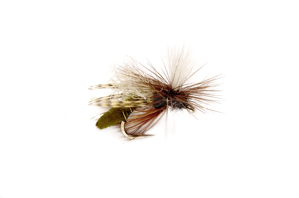 Spotlight Caddis Emerger Olive