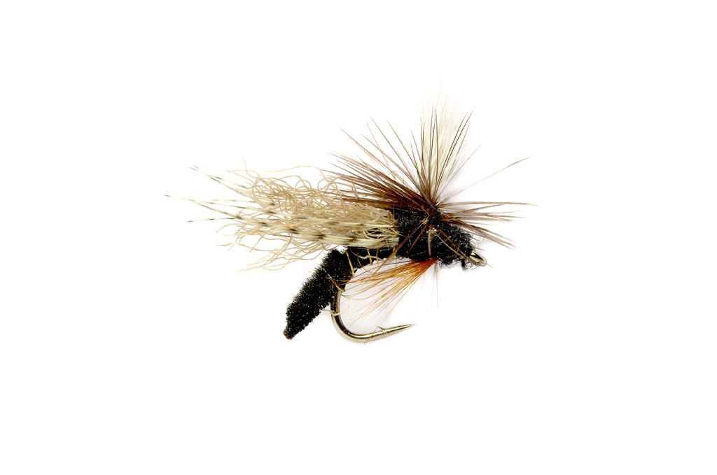 Spotlight Caddis Emerger Black