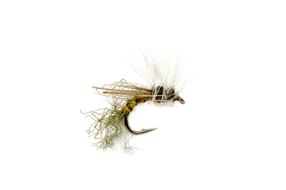 Smith's Crippled BWO