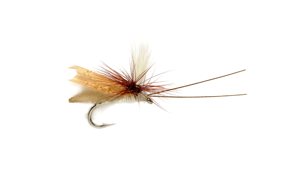Headlight Caddis Tan