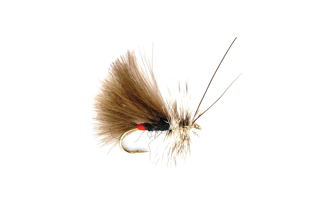 Black High Rider CdC Caddis