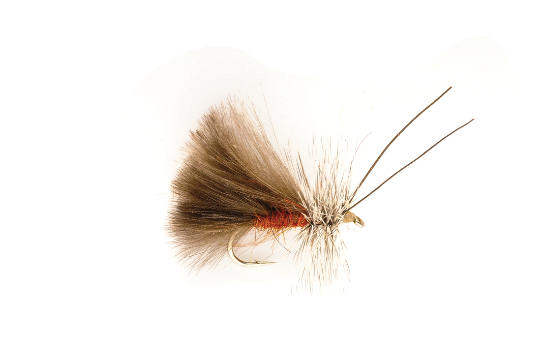 Brown High Rider CdC Caddis