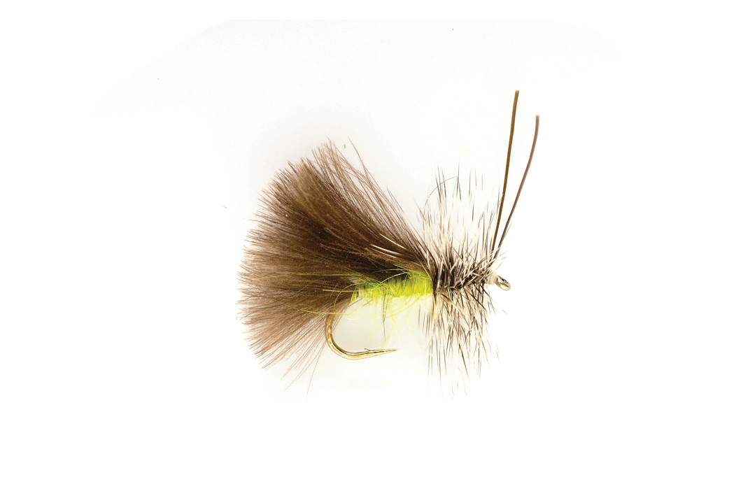Green High Rider CdC Caddis