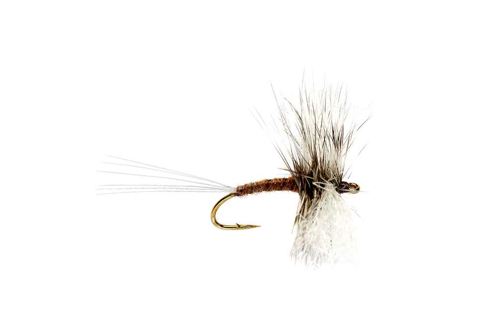 Gray Drake Hackle Spinner