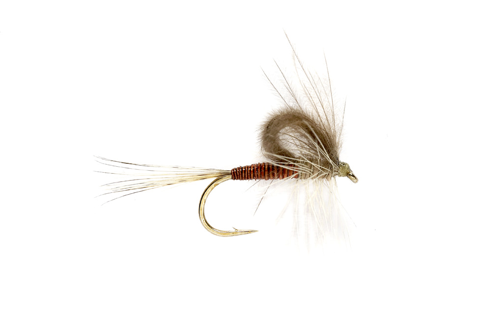 CdC Loopwing Quill Emerger Hendrickson
