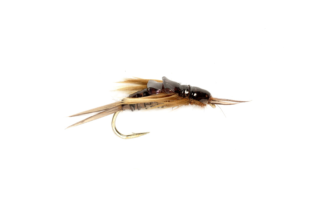 OE Stonefly Nymph Black