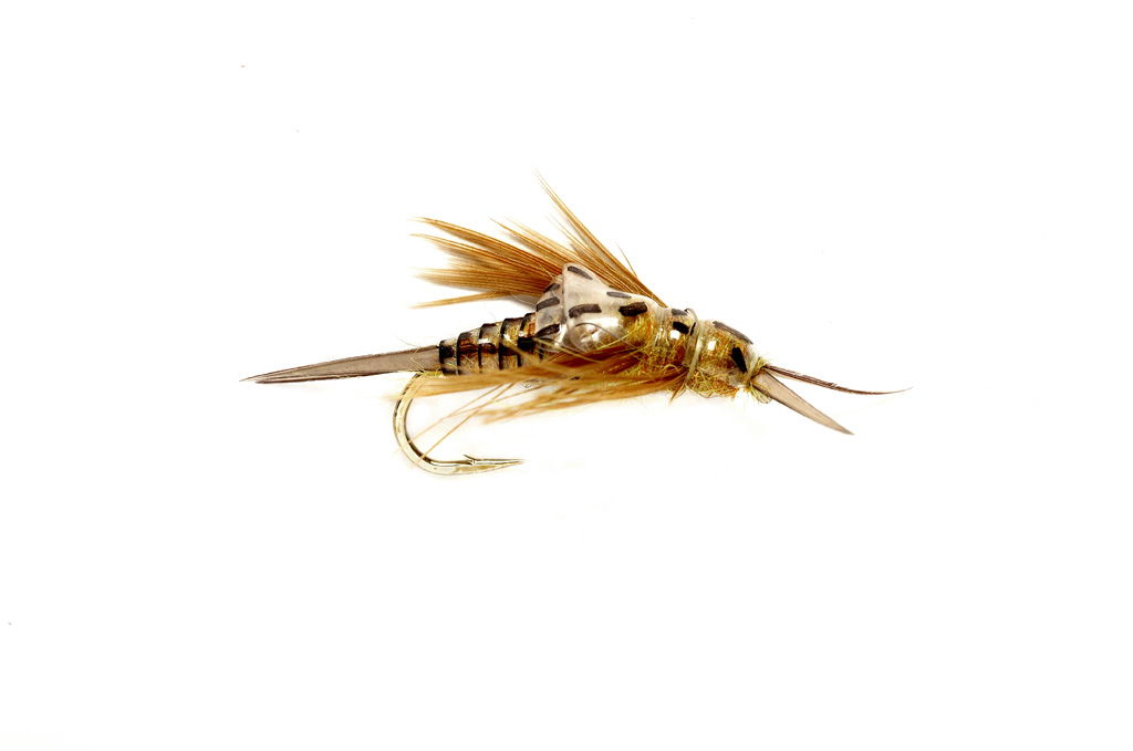 OE Stonefly Nymph Golden