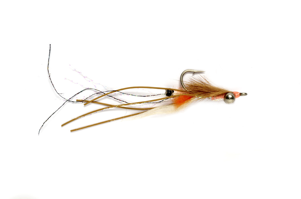 Peterson's Spawning Shrimp