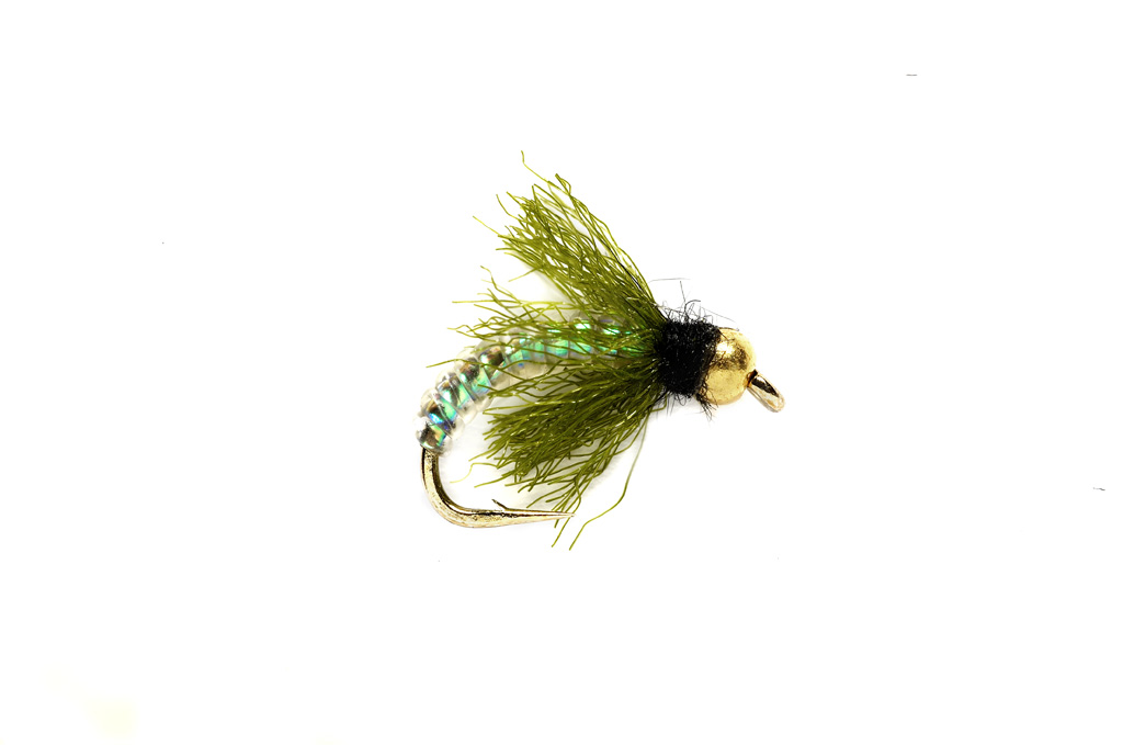 Iko Caddis Green