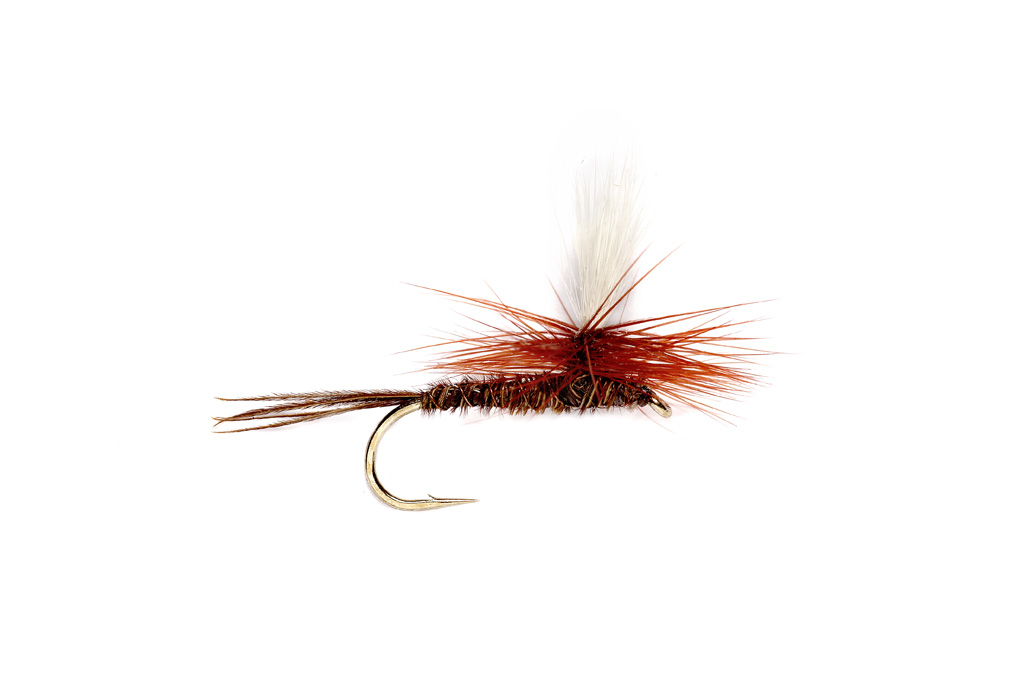 Fall Trout Flies