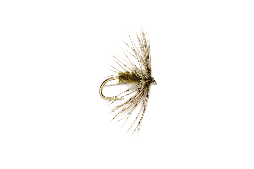 Sparkle Soft Hackle Light Olive